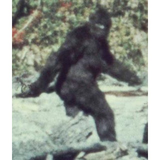 Bigfoot: Man Or Beast? (1972)
