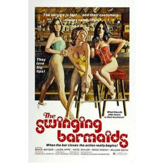 The Swinging Barmaids (1975)