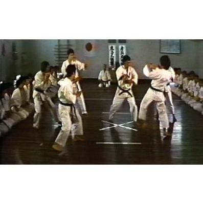 Karate Wars (1975)