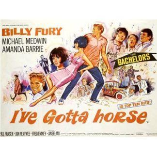 I've Gotta Horse (1965)