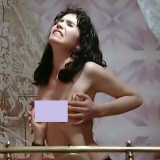 Couples Voyeurs Et Fesseurs (1977)