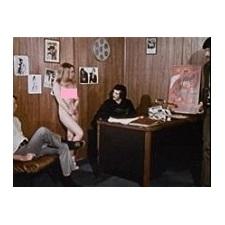 How To Make A Sex Movie!! (1971)