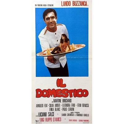 IL Domestico (1974)