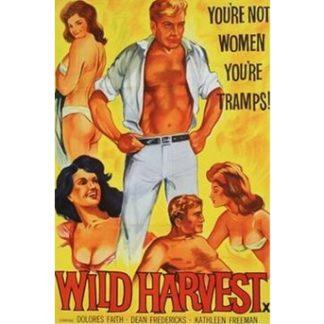 Wild Harvest (1962)